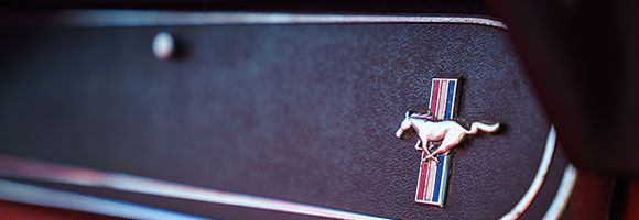 Handschufach mit Emblem